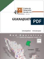 Consumo Drogas Guanajuato