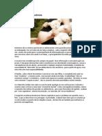 Apostila de Redação (Atualizada 2014)