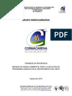 Terminos Cormacarena Septiembre