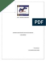 Investigacion Cualitativa Para Supermerc Modelo