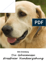 Stressfreie Hundeerziehung