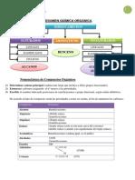 Resumen Química Orgánica - Copia