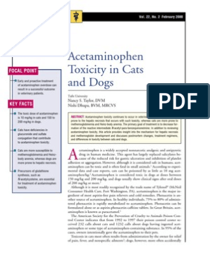 C+F-Acetaminophen Toxicity in Cats and Dogs | Glutathione