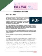 Calendario Del Bebé
