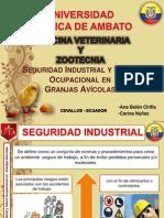 Seguridad Industrial y Salud Ocupacional de Granjas Avicolas Ana Belen Chifla y Carina Nuñez