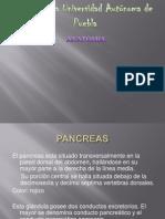Expo Antamia[1]