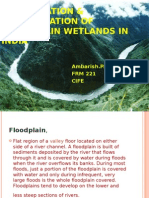 Conservation and Rehabilitation of Flood Plain