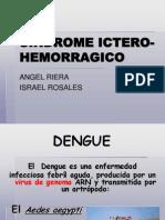 Ictero Hemorragico (Mio)