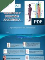 Tema 1 Términos y Posiciones Anatómicas
