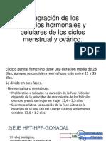 Integración de Los Cambios Hormonales y Celulares De