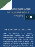 Gestion Profesional de La Seguridad e Higiene Clase