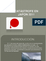 Catastrofe Japon