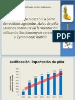 Producción de Bioetanol a Partir de Residuos de Piña
