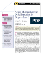 CANINE-Acute Thoracolumbar Disk Extrusion in Dogs-PART I