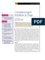 CANINE-Cricopharyngeal Achalasia in Dogs