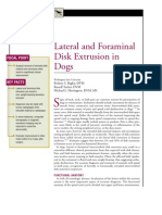 CANINE-Lateral and Foraminal Disk Extrusion in Dogs