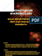 Profil Lab.mikro