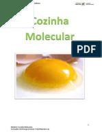 trabalhomolecular-140408125357-phpapp01