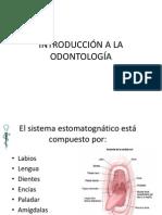 Introducción a La Odontología 01