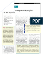 EXOTİC-Treatment of cartilaginous hyperplasia in ball pythons