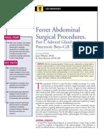 FERRET-Abdominal Surgical Procedures Part I