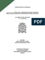 Informe de Práctica Profesional