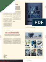 2521_denimbible_2010.pdf