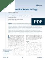 Lymphoid Leukemia in Dogs