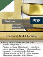104782840-REFERAT-Glaukoma