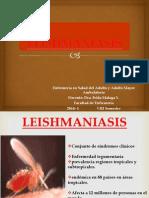 LEISHMANIASIS 2014