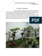 parte1_Manual_Tecnicas_Bonsai_neocultivos.pdf