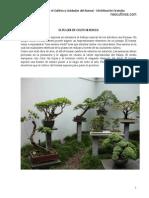 parte1_Manual_Tecnicas_Bonsai_neocultivos.pdf