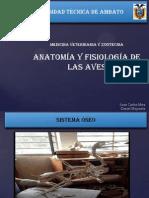 ANATOMIA Y FISIOLOGIA DE LAS AVES - MIRA Y MOPOSITA.pptx