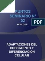 PUNTOS SEMINARIO N° 02.ppt