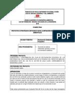 FICHA PROYECTO.pdf