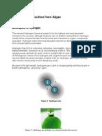 Hydrogen Production From Algae