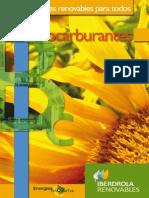 public-BIOCARBURANTES.pdf