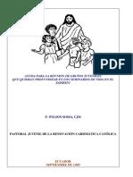 Ayuda para la reunión de grupos juveniles que quieran profundizar en los seminarios de Vida en el Espíritu.pdf