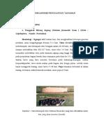 Hama Penyakit Tanaman Pangan - Hortikultura (by : Afdhal Syukri/06116011)