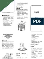 DIARE Leaflet