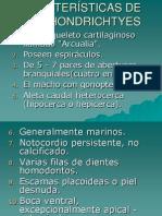 CARACTERÍSTICAS DE LO CONDRICTIO.ppt