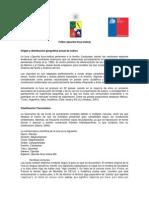 pepeeltorito.pdf