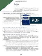 Vejiganeurogena.pdf