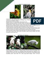 Floran Fauna Burung