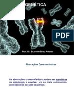 Genetica_cromosso (1).pdf
