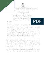 Informe 2 Flujo compresible K.docx