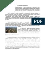 La contaminación ambiental.docx
