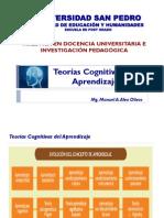 Teorias Cognitivas del Aprendizaje.pdf