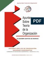 APUNTES SOBRE TEORIA DE LA ORGANIZACI_N.pdf
