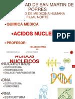AC.NUCLEICOS-14-I-CHI.ppt